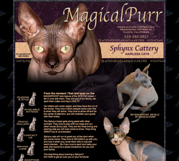 Magical Purr